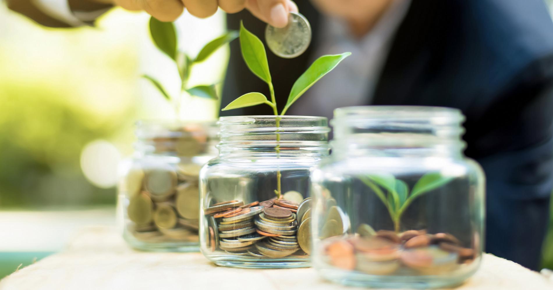 Ilustrasi Menabung dan Investasi (Foto: Canva)