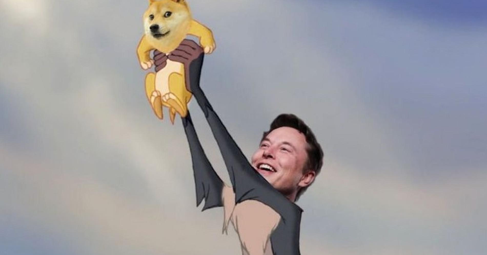 Meme Elon Musk dan Dogecoin. source: zonabanten.com