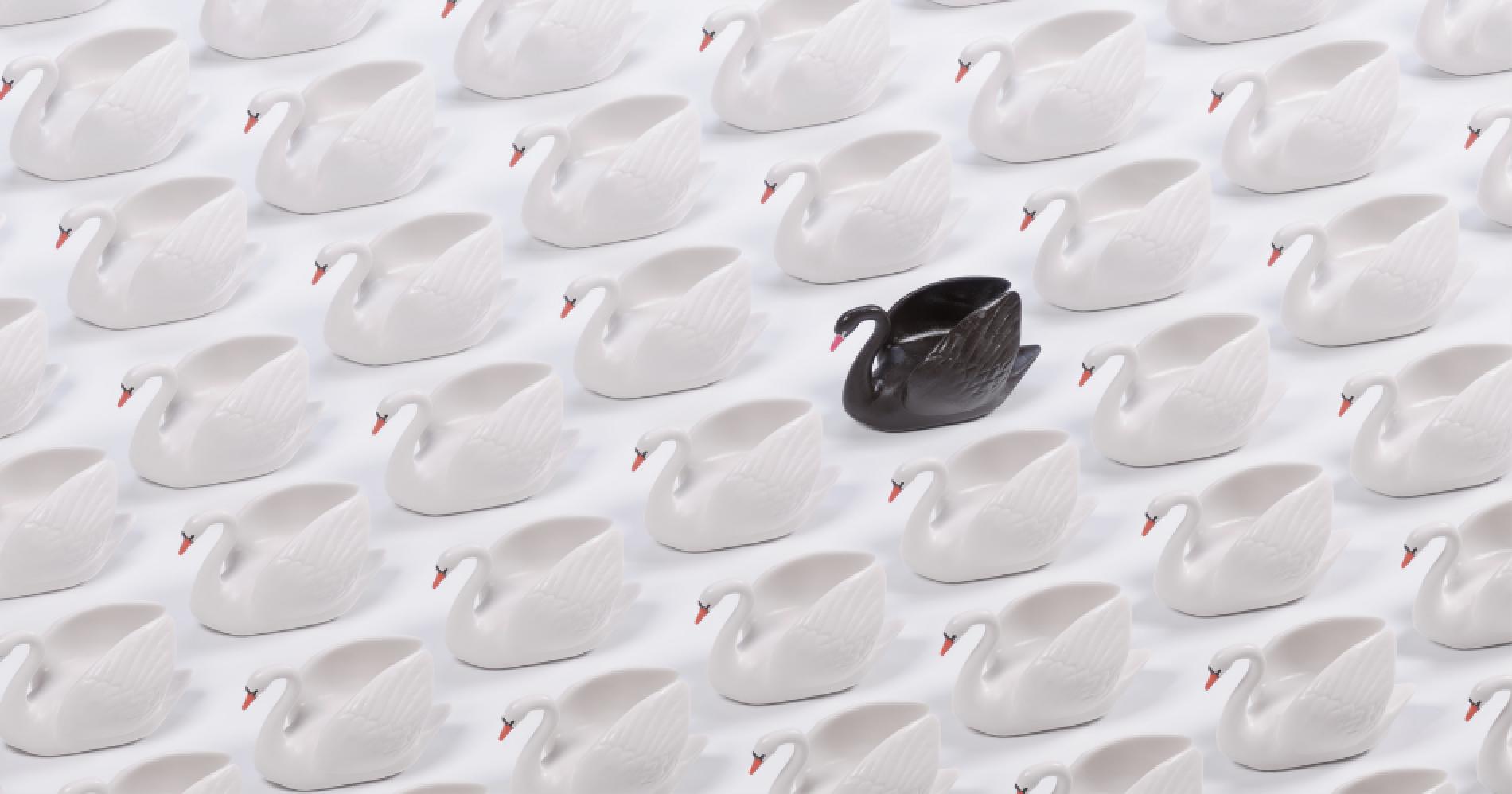 Black Swan Illustration Web Bisnis Muda - Canva