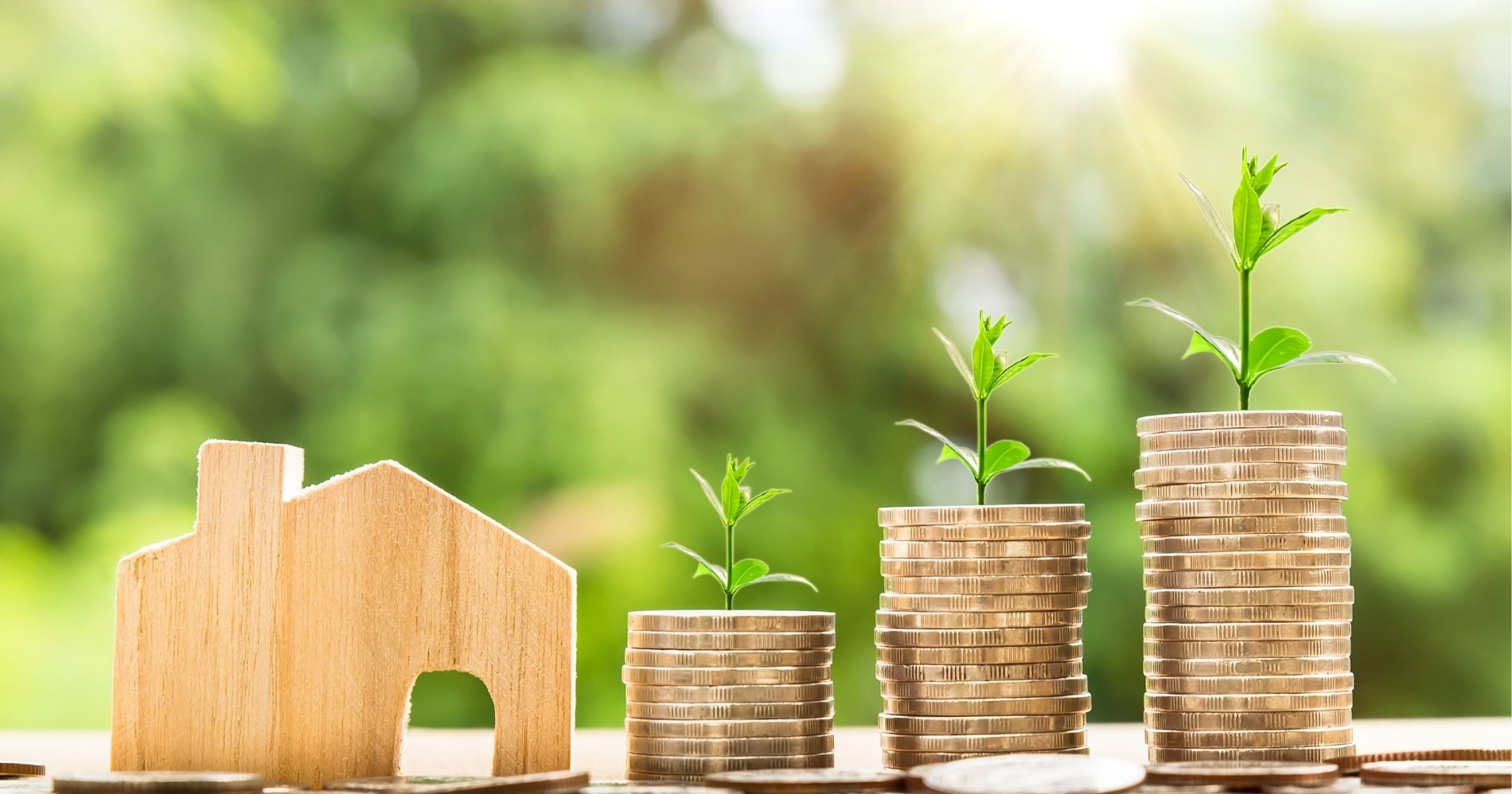 Ilustrasi Gambar Investasi Yang mudah untuk pemula - Bisnis Muda - Canva.com