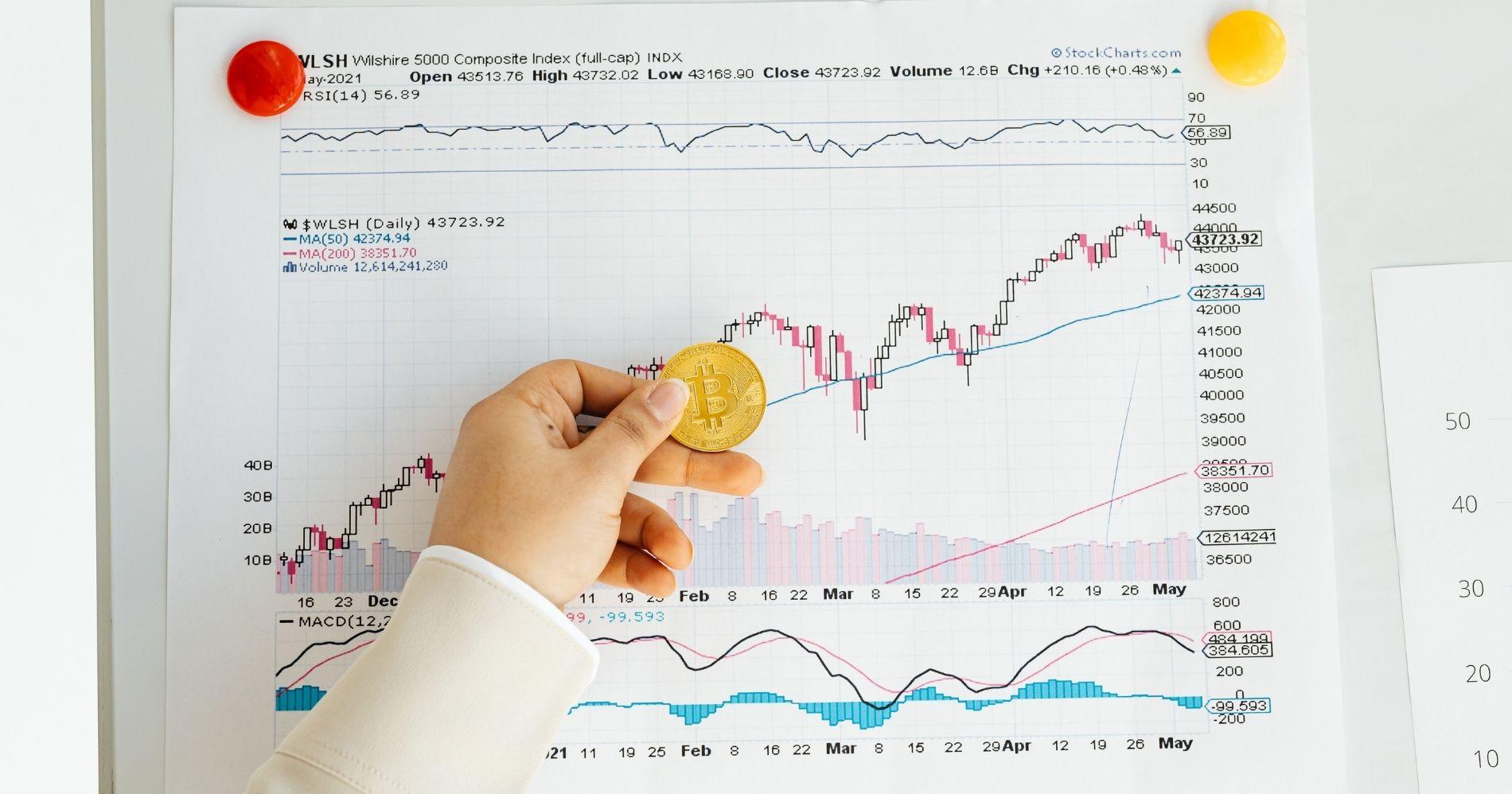 Ilustrasi Gambar Trader - Bisnis Muda - Canva.com
