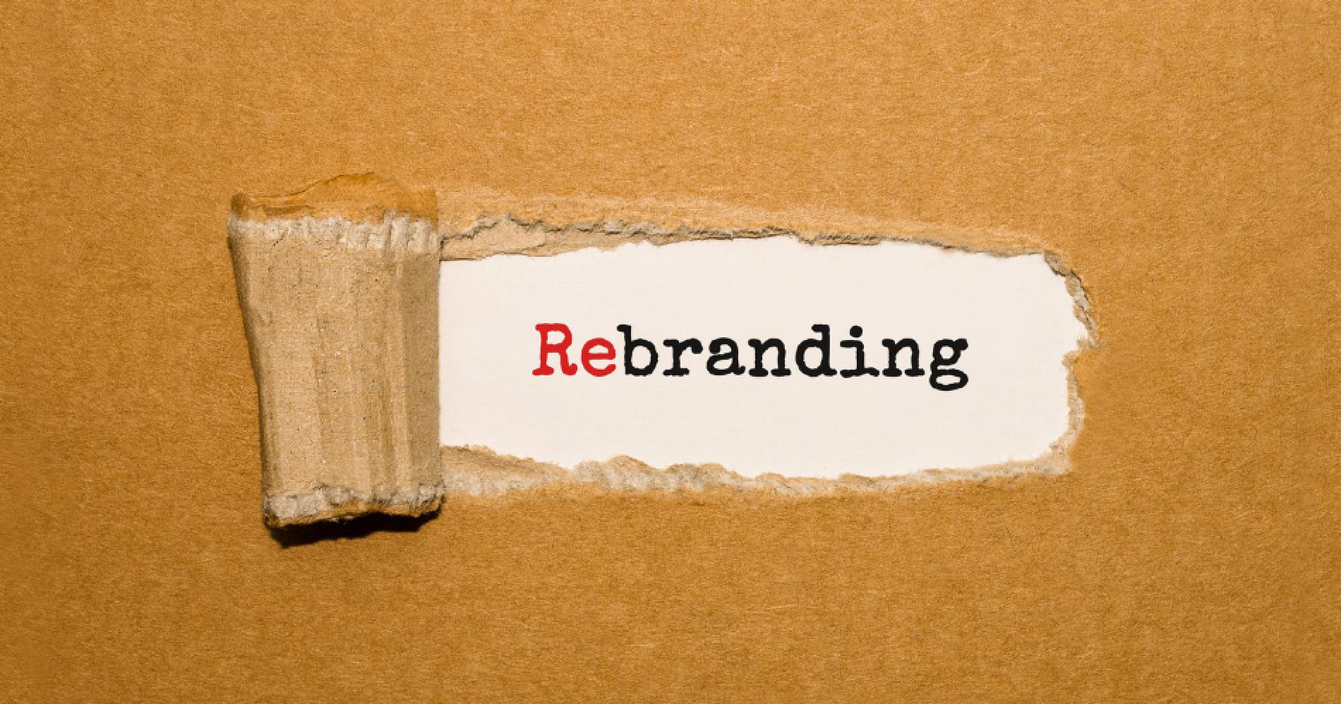 Rebranding Illustration Web Bisnis Muda - Canva