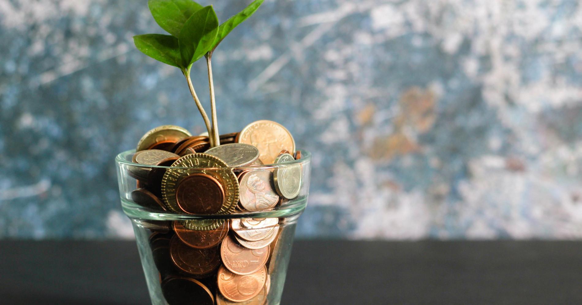 Memilih Investasi yang Tepat (Sumber: Unsplash)