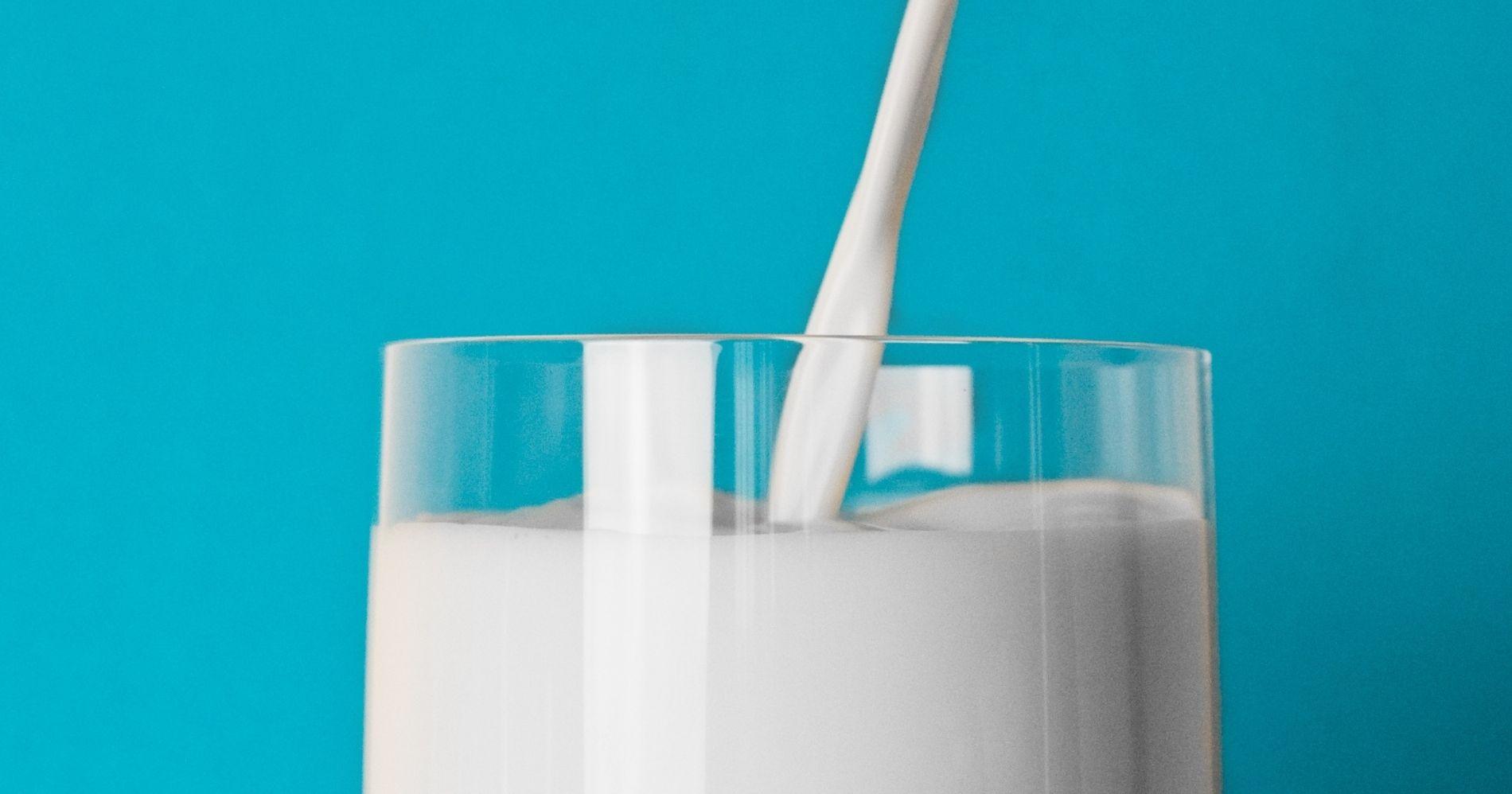 Milk - Canva
